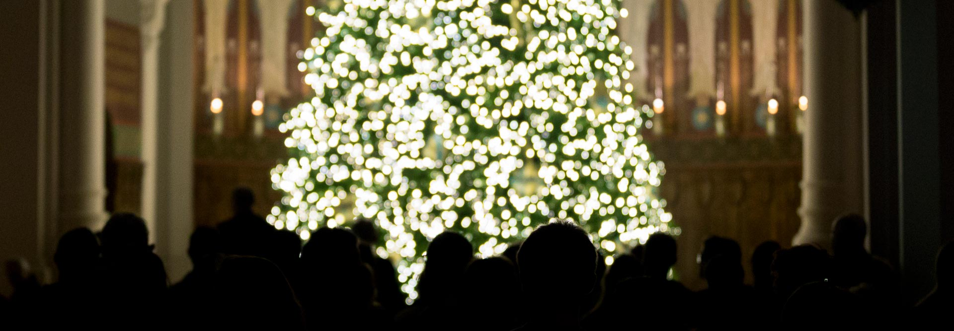 Lighting the Saint John's Tree - a beloved campus tradition